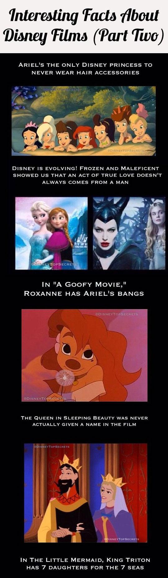 cool-Disney-secrets-Castle-princess