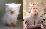 Joffrey-Baratheon